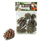 Back-Zoo-Nature-Forest-Pine-Cones-for-Birds